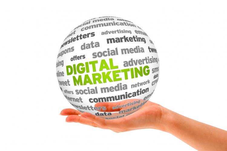 Ignyte Digital Marketing agency, Saffron Walden, Essex and Cambridge